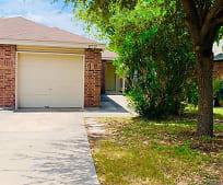 11717 Capotillo St, Hills of Park North, San Antonio, TX