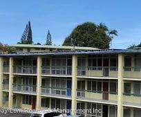Building, 222 Wainaku St