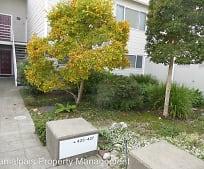 427 Enfrente Rd, Novato, CA