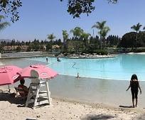 Pool, 2063 Lakeridge Cir