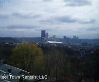 1229 Itin St, Spring Garden, Pittsburgh, PA