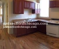 4830 W Van Buren St, Leland Elementary School, Chicago, IL