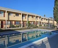 Pool, 1170 Murchison Ave