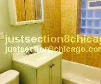 6733 S Perry Ave, Greater Grand Crossing, Chicago, IL
