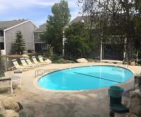 Pool, 25423 Pine Creek Ln