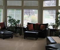 Living Room, 20721 Olympic Pl