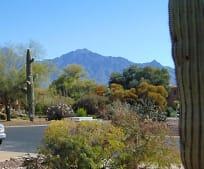 972 W Desert Hills Dr, Green Valley, AZ