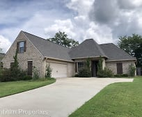 Brilliant Houses For Rent In Reunion Madison Ms 3 Rentals Download Free Architecture Designs Sospemadebymaigaardcom