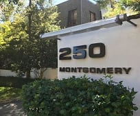 250 Montgomery Ave, Rosemont, PA