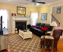 Living Room, 420 Lark Run