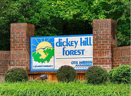 Dickey Hill Forest - Baltimore