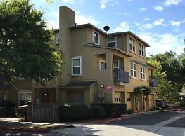 Olive Grove - Santa Rosa
