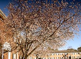 Windsong Apartments Virginia Beach Va