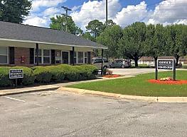Lauradale Apartments - Jacksonville