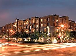 City Lights on Fig - Los Angeles