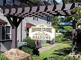 Brush Creek Meadows - Johnson City