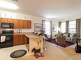 1200 Acqua Luxury Apartments - Petersburg