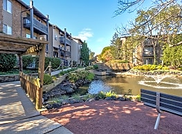 Forest Cove - Mount Prospect