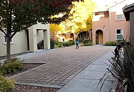 Colgan Meadows, Santa Rosa, CA