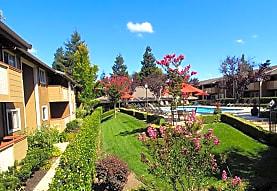 Shadow Oaks, Cupertino, CA