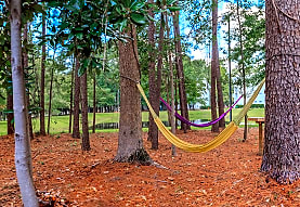 Birchwood Park, Wilmington, NC