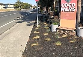 Coco-Palms, Fairfield, CA