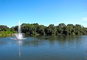 Lake Azzure, Tampa, FL