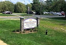 Mt Olive Manor, Flanders, NJ