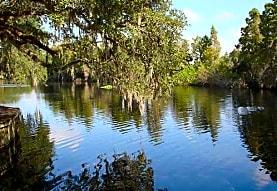 Rivertree Landing, Tampa, FL
