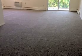 carpeted spare room with a wealth of natural light and baseboard radiator, Chestnut Hill North