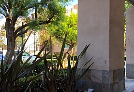 Paseo Del Oro, San Marcos, CA