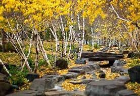 The Parkside, Saint Paul, MN