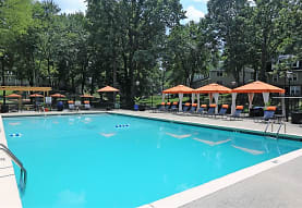 view of pool, The Avenue Apartments