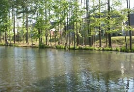 Taylor's Pond, Durham, NC