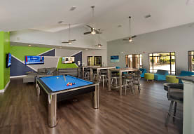 Reflections Apartments - Per Bed Lease, Tampa, FL