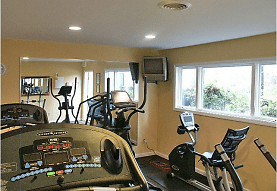 workout area featuring natural light and TV, Crickentree