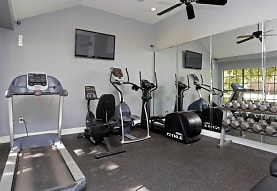 workout area featuring a ceiling fan, carpet, natural light, and TV, Peppertree Apartments