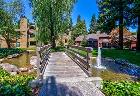 Shadow Creek, Santa Rosa, CA
