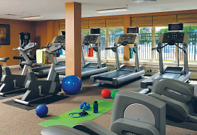 workout area with TV, The Apartments at Bonnie Ridge