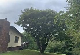 5 Brookside Cir, Candler, NC