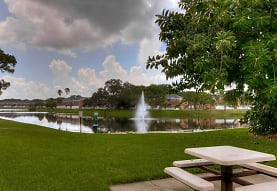 The Park at Treviso, Saint Petersburg, FL
