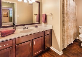 bathroom with parquet floors, shower curtain, vanity with extensive cabinet space, mirror, and toilet, Grandin House