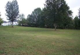 513 Vaughan Valley View, Hampton, GA
