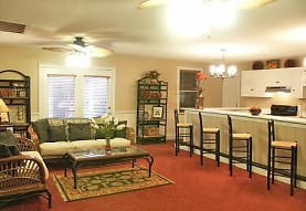 living room with carpet, natural light, a ceiling fan, a kitchen breakfast bar, fume extractor, and range oven, Riverwood Apartments
