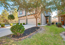 20 Cheswood Manor Court, The Woodlands, TX