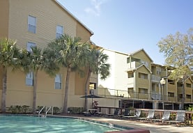 Buena Vista, Tampa, FL