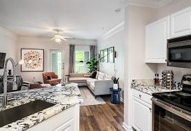 Citra Luxury Apartments, Charlotte, NC