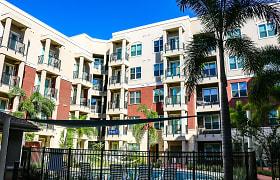 Varela Westshore Apartments - Tampa, FL 33607
