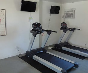 Fitness Weight Room, Palm Garden Apartments