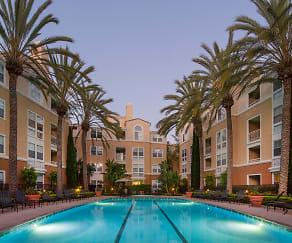 Pool, La Jolla Palms